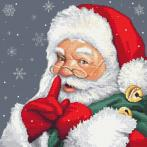 AN 10477 Tapestry Aida - Mischievous Santa Claus