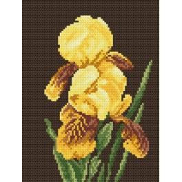 Online pattern - Yellow irises