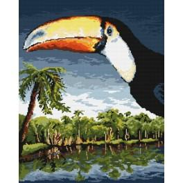 Tucan - Tapestry canvas