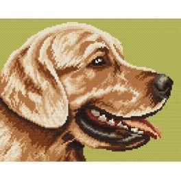 4173 Golden Retriever - Tapestry canvas