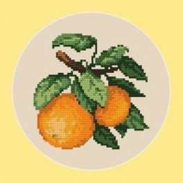 Sweet oranges - B. Sikora-Malyjurek - Tapestry canvas