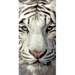 6537 Siberian Tiger - Tapestry canvas