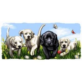 K 7146 Puppies - Tapestry canvas