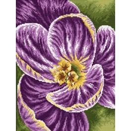 W 33037 ONLINE pattern pdf - Blooming Iris