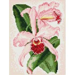W 4089 ONLINE pattern pdf - Orchid - pink charm