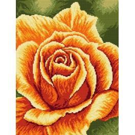 W 4150 ONLINE pattern pdf - Rose