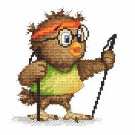 Online pattern - Little owl – Walker