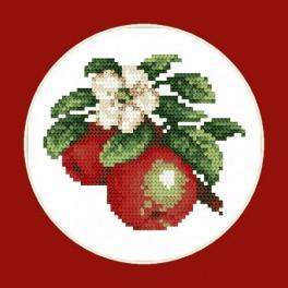 Juicy apples - B. Sikora-Malyjurek - Cross Stitch pattern