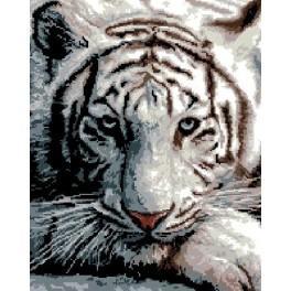 Siberian Tiger - Cross Stitch pattern