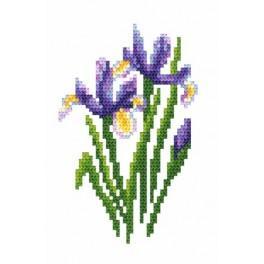 GC 8471 Irises - Cross Stitch pattern