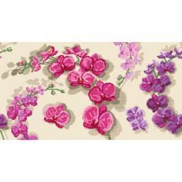 GC 8552 Orchids - Cross Stitch pattern