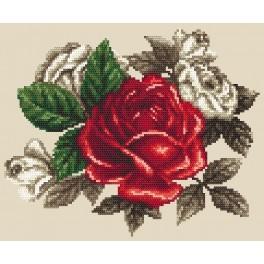 GC 8568 - Cross Stitch pattern
