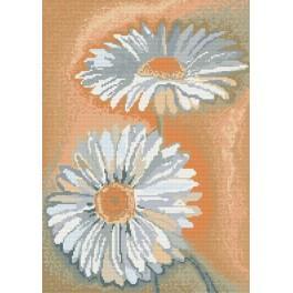 Daisies - Cross Stitch pattern