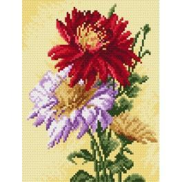 Asters - Tapestry canvas