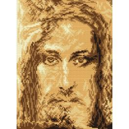 AN 4264 Shroud of Turin - Tapestry aida