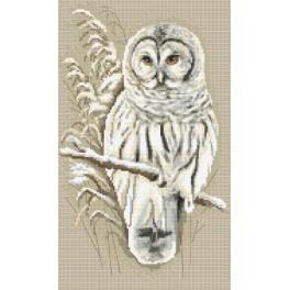 Owl - Tapestry aida