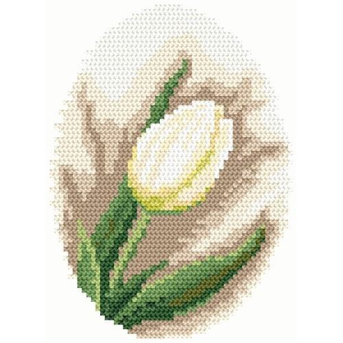 White tullip - Tapestry aida