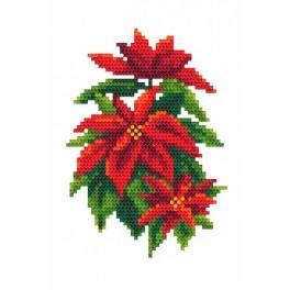 Poinsettia - Tapestry aida