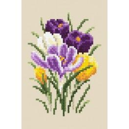 Crocuses - Tapestry aida
