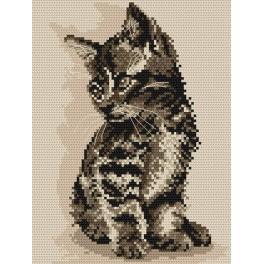 Kitten - Tapestry aida