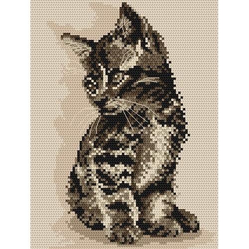 AN 871 Kitten - Tapestry aida