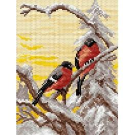 Bull Finch - Tapestry aida