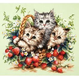 Cross stitch kit - Little kittens