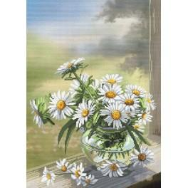 Kit with mouline and printed background - Camomille flowers
