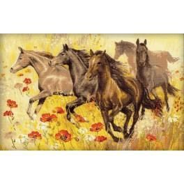 Cross stitch kit - Horses