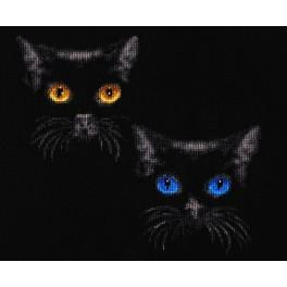 RS 011 Cross stitch kit - Shine of eyes