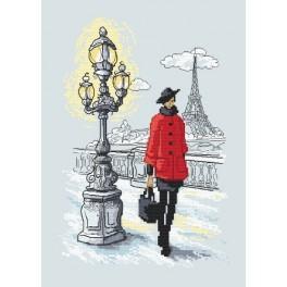 Cross stitch kit - Parisian chic