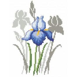 Zestaw z muliną - Wiosenne kwiaty - Irysy