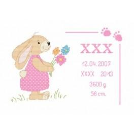 Cross stitch kit - Birth certificate with bunny