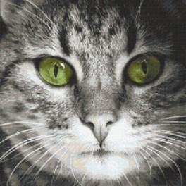 Cross stitch kit - Green-eyed cat