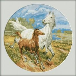 Cross stitch kit - Horses
