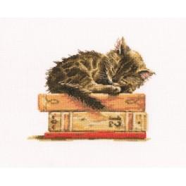 Cross stitch kit - Cat's dream