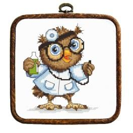 Kit with tapestry and frame - Small owl - doctor