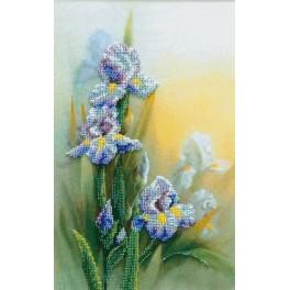 Set with beads - Irises
