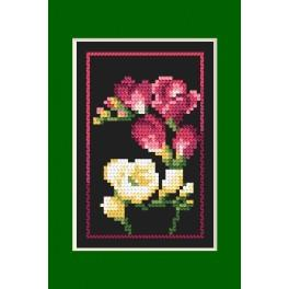 Cross stitch kit - Birthday card - Freesias