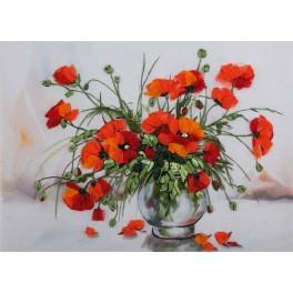 Ribbon set - Study of poppies