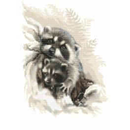 AN 10097 Tapestry aida - Lovely raccoons