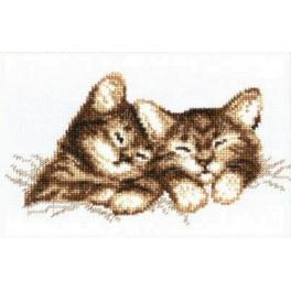 Cross stitch set - Kittens