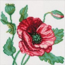 ZTM 083 Cross stitch kit - Poppy