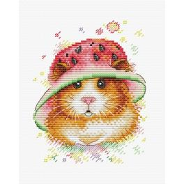 Cross stitch kit - Watermelon style