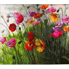 Cross stitch kit - Poppies in field