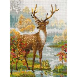 Kit with yarn - Deer