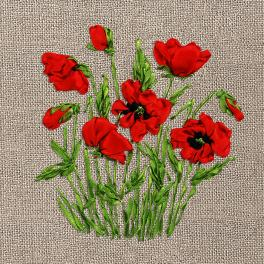 Ribbon set - Wild poppies