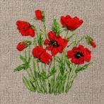 Ribbon set - Wild poppies