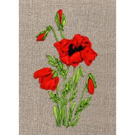 Ribbon set - Wild poppie