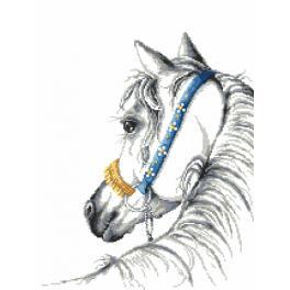 Tapestry aida - Arabian horse